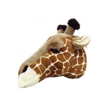 Giraf Hoved