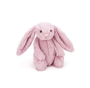 bashful kanin rosa