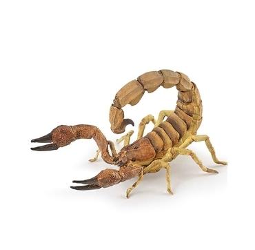 Papo skorpion