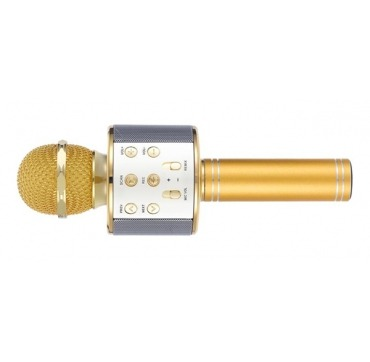 Mikrofon guld