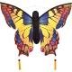 Sommerfugl drage smuk