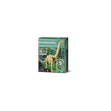 Tyrannosaurus brachiosaurus    udgravning - dino/krestiv